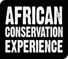 African Conservation Experience @ACEafrica #Gapyear #SummerVolunteer #ConservativeEnvironment #AnimalCare #Africa #WildlifeConservation in #Botswana #SouthAfrica #Zimbabwe