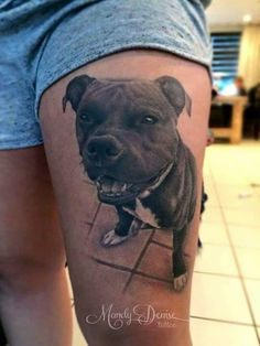 my staffordshire bull terrier sweetie done by kelly krantz at vanguard tattoo nyack ny taken. Black Bedroom Furniture Sets. Home Design Ideas
