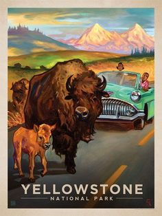 Yellowstone National Park: Bison Crossing - Anderson Design Group has created an award-winning series of classic travel posters that celebrates the history and charm of America's greatest cities and national parks. Founder Joel Anderson directs a team of talented artists to keep the collection growing. This oil painting by Kai Carpenter celebrates the wonderful wildlife of Yellowstone National Park.