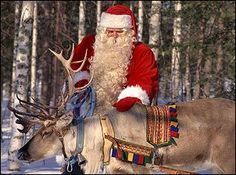 Watch Santa feed the Reindeer 3 times each day in December! My kids love this!