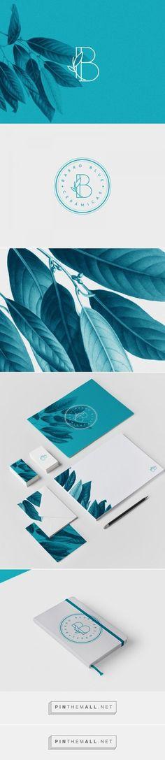 Barro Blue Ceramicas Branding
