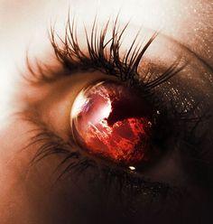Through my eyes                                                                                                                                                                                 More