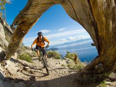 How cool is this view!!! Mountain Biking the Tahoe Rim Trail in California/Nevada