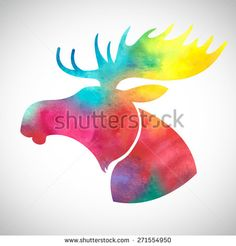 Moose Stock Photos, Images, & Pictures | Shutterstock