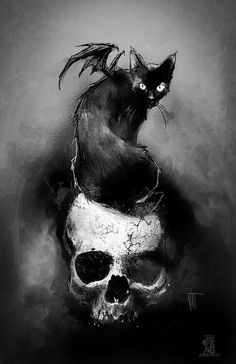 Skull with a black cat on his head