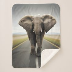 Elephant Trucker Small Sherpa Fleece Blanket - animal gift ideas animals and pets diy customize Custom Big Rigs, Edge Stitch, Its Cold Outside, Diy Stuffed Animals, Pet Gifts, Picture Photo, Customized Gifts, Animals And Pets, Cuddling