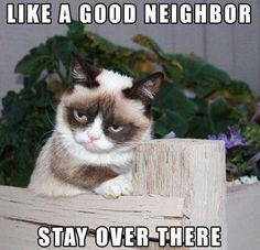 Grumpy Cat wants you to stay over there!