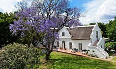 A Manor House and Vineyard in South Africa (aka My Dream) via NYTimes.com