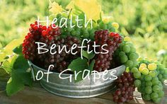 The list of grape varieties seems to be endless: there are red, purple, green grapes and there are also seedless grapes. You can also consume grape juice, grape jellies, and grape jams. Let's also not forget that wine and raisins come from grapes as well. Indeed, this fruit is very popular and has been in…