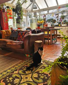 Bohemian Living Rooms, Living Spaces, Hippy Room, House Plants Decor, Dream Apartment, Room Ideas Bedroom, Cozy Place, Cool Rooms, My Dream Home