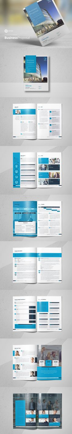 Business Proposal Template INDD