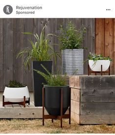 Modernica Case Study Ceramics® Hex with Walnut Stand - White Front Porch Planters, Galvanized Planters, Metal Planters, Large Planters, Indoor Planters, Galvanized Metal, Planter Pots, Garden Plant Stand, Plant Stands