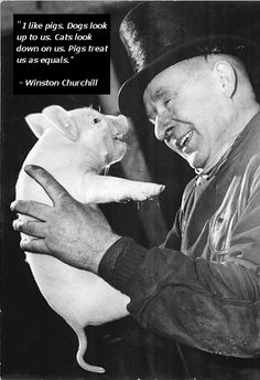 I love this quote by Winston Churchill. I was going to make this board all about Dogs and Cats, but upon further deliberation, I have decided that wouldn't be fair. This board will be all about the love shared between our furry (and not so furry) friends and their people.