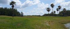 Fields of Palms - Central Park - East Orlando, FL