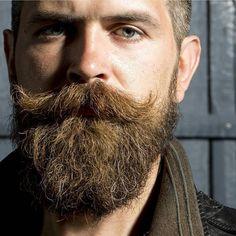 """""""@royalbeardclub 4 #beautifulbeard #beardmodel #beardmovement  #baard  #bart #barbu #beard #beards #barba #bearded #barbudo #barbeiro #parta #beardo…"""""""