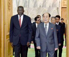 김영남위원장이 적십자 및 적반월회 국제련맹 총서기일행을 만났다
