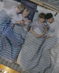 Seungcheol and Vernon, Wonwoo and Mingyu Seventeen Hip Hop Unit, Seventeen Album, Mingyu Seventeen, Mingyu Wonwoo, Seungkwan, Woozi, 17 Kpop, Choi Hansol, Seventeen Scoups