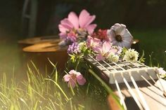 Bring me flowers and play me a song....