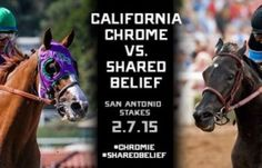 California Chrome, the Horse of the Year and rival Shared Belief square off in the San Antonio, 2015.