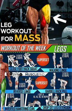 part 1 of hunter labrada leg workout  leg training best