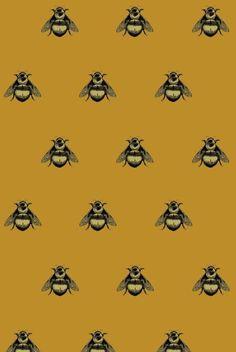 Timorous Beasties Napoleon Bee on Velvet in Black & Gold on Honey