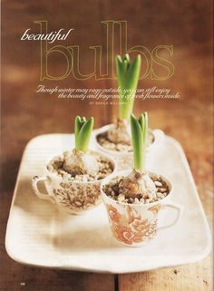 Out of Print Decorating - Country Home, December 1999, Beautiful Bulbs