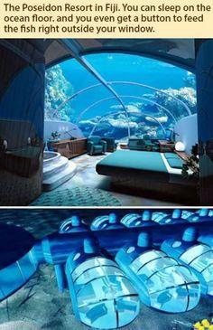 Sleep on the ocean floor.
