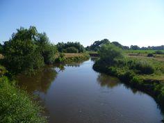 2013-07-21 Lekker gewandeld langs de Regge, eerst de gele en na enkele kilometers de blauwe route van de Velderberg