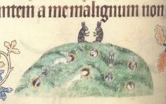 Luttrell Psalter, Diocese of Lincoln, c.1325-1335, London British Library, Add MS 42130, fol 176v.