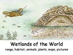 Wetlands of the World Index -- Exploring Nature Educational Resource