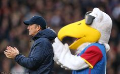 Not content with his special access to the touchline, Crystal Palace mascot Pete the Eagle mimics manager Tony Pulis in comical fashion by applauding their win over Cardiff in December 2013