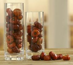 Dried pumpino vase filler- Pottery Barn