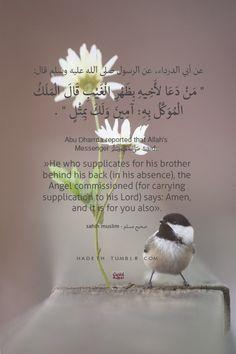 "عن أبي الدرداء، عن الرسول صلي الله عليه وسلم قال:"" مَنْ دَعَا لأَخِيهِ بِظَهْرِ الْغَيْبِ قَالَ الْمَلَكُ الْمُوَكَّلُ بِهِ آمِينَ وَلَكَ بِمِثْلٍ "" . صحيح مسلم Abu Dharrda reported that Allah's Messenger (ﷺ) said:""He who supplicates for his brother behind his back (in his absence), the Angel commissioned (for carrying supplication to his Lord) says: Amen, and it is for you also"". Sahih Muslim 2732bIn-book reference:Book 48, Hadith 120"