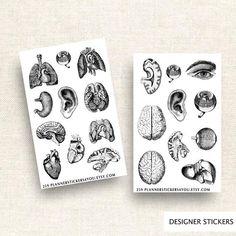 Anatomy Sticker Set Planner Stickers Journal Stickers Stationary Sticker Body Bones Skull Skeletons Brains Hearts 259 by Planner Stickers, Journal Stickers, Vintage Scrapbook, Baby Scrapbook, Travelers Notebook, Filofax, Scrapbooking Stickers, Body Bones, Sticker Organization