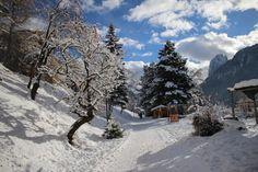 In Val Gardena 20 cm di neve fresca!