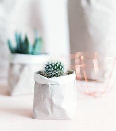 idées diy cache pot pour cactus. Idéal pour placer à table en guise de cadeaux aux invités