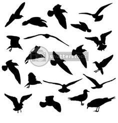 bird silhouettes by twilightrun, via Flickr