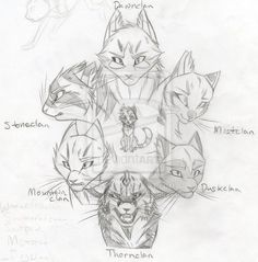 Star Clans Chosen Ones SKETCH by KasaraWolf on DeviantArt
