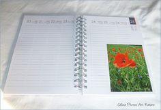 Céline Photos Art Nature - Google+ Celine, Photo Art, Nature, Signs, Google, Photos, Day Planners, Poppies, Pictures