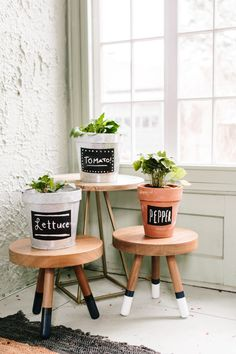 Simple Indoor Vegetable Garden made with @naturescare Organic Potting Mix #sponsored