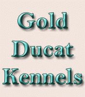 Gold Ducat Boarding Kennels - Rates, Hours, Grooming