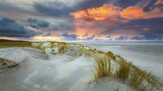 Ligt er een uitstapje naar Nederland in het verschiet en wil je er vooral genieten van de mooie natuur? Dan moet je naar het Waddengebied. Dat heeft dit ja...
