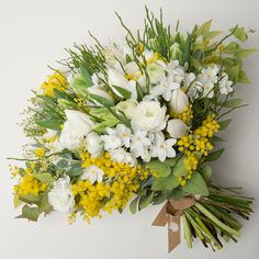Hand Tied Wedding Bouquet Featuring: Paper Whites, White Ranunculus, White Tulips, Yellow Mimosa Flowers (Acacia), Green Parrot Tulips, Greenery and Foliage