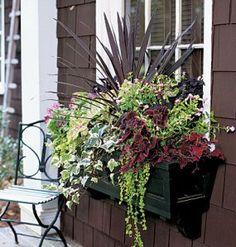 Window box arrangement: Beautiful colors and textures