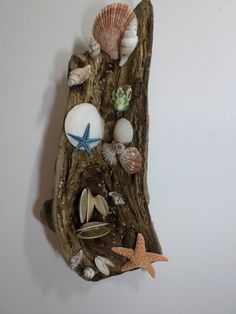 Driftwood Sculpture - Ocean Themed Wall Decor - Beautiful One-of-a-Kind Driftwood and Shell Art Sculpture!