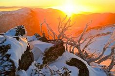 Sunset at Falls Creek with a fresh blanket of snow, Victoria, Australia