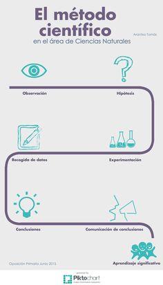 Método científico. Infografía.