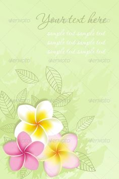 Card with frangipani flowers. Vector illustration.
