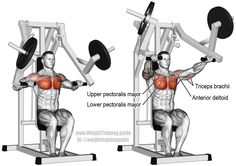 Machine chest press. A compound push exercise for upper-body strength and building your chest. Muscles worked: Lower Pectoralis Major, Upper Pectoralis Major, Anterior Deltoid, and Triceps Brachii. See website to learn when this exercise is appropriate.