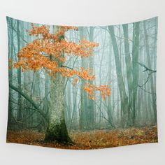 Autumn Woods Wall Tapestry. #photography #landscape #nature #digital #woods #woodland #forest #tree #leaves #fog #mist #winter #autumn #moody #dreamy #outdoors #explore #hike #blue #gray #rustic